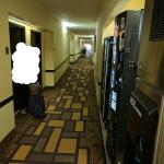 BEST WESTERN PLUS Addison Galleria Hotel Foto