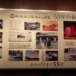 Foto di Kumamoto Hotel Castle