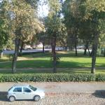 View from room to Gogol park and parked cars on street