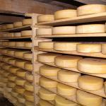Käse aus der lokalen Produktion