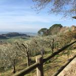 Beautiful agriturismo. Breathtaking views, quiet and best way to relax and called it home for a