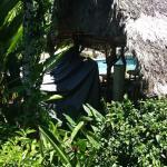 Foto di Hotel Blue Conga