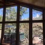 Foto de The Grand Idyllwild Lodge