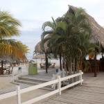 Foto de Hotel Ejecutivo Las Palmas Beach