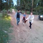 Paseando a nuestra hija en el Pony!