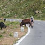 Photo de Timmelsjoch high alpine road