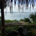 View from Rainforest Casita