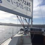 Foto di Monterey Bay Sailing