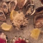 Pearl Diver Foto