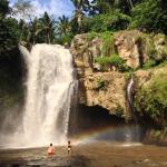 Bali Silver Trans Day Tours