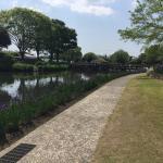 Photo de Hayamizu Park