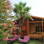 Anatolia Resort (Wooden Bungalow)