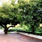 Fynbos Villa Guest House Foto