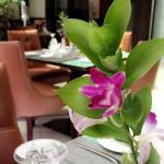 صورة فوتوغرافية لـ Roma Restaurant