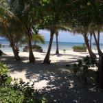 Landscape - El Pescador Resort Photo