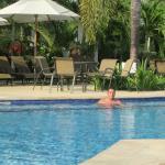 mañana de relajamiento en la piscina para mayores de 18, tranquilidad total