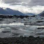 Knik Glacier in the background (behind large black iceberg), taken from hilltop