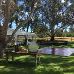 Wedding set up back lawns