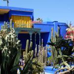 """Le jardin et le célèbre """"bleu Majorelle"""""""