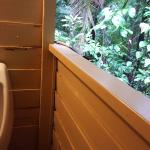 Men's urinal with rainforest views