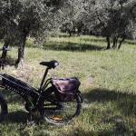 electric bike from Daytour