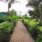 Jardín central.