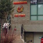 Foto de Ammonite Factory