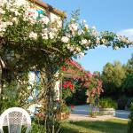 Photo of B&B Vento di Rose