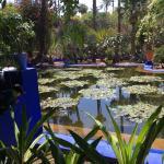 Photo de Jardin Majorelle