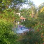 View of pool from my balcony