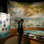 Tsushima Wildlife Conservation Center