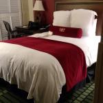 Bourbon Orleans Hotel afbeelding