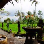 Sharing Bali Photo