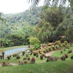 un très beau parc