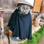 Photo of Juemon