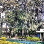 Photo de Arborea Hotel