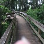Boardwalk at Lake Dora