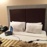 Deccan Plaza Hotels Foto