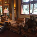 """resident' bear in general sitting area...everyone loves him"