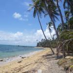 Une plage très proche