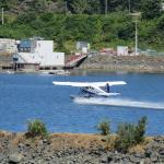 Seaplane taking off in harbour