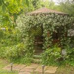 Pretty gazebo in the garden
