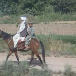 Recreational Trail Riding is available