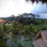 Landscape - Karsa Cafe Photo