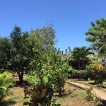 Bunaken Island Resort Foto