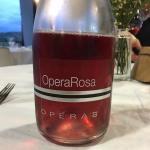 Opera02 di Ca' Montanari Foto