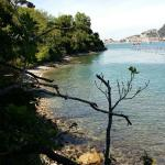 Photo de Isola Palmaria