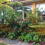 Vista del comedor desde el jardín
