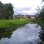 Canal en Paramaribo