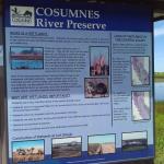 Cosumnes River Preserve Foto